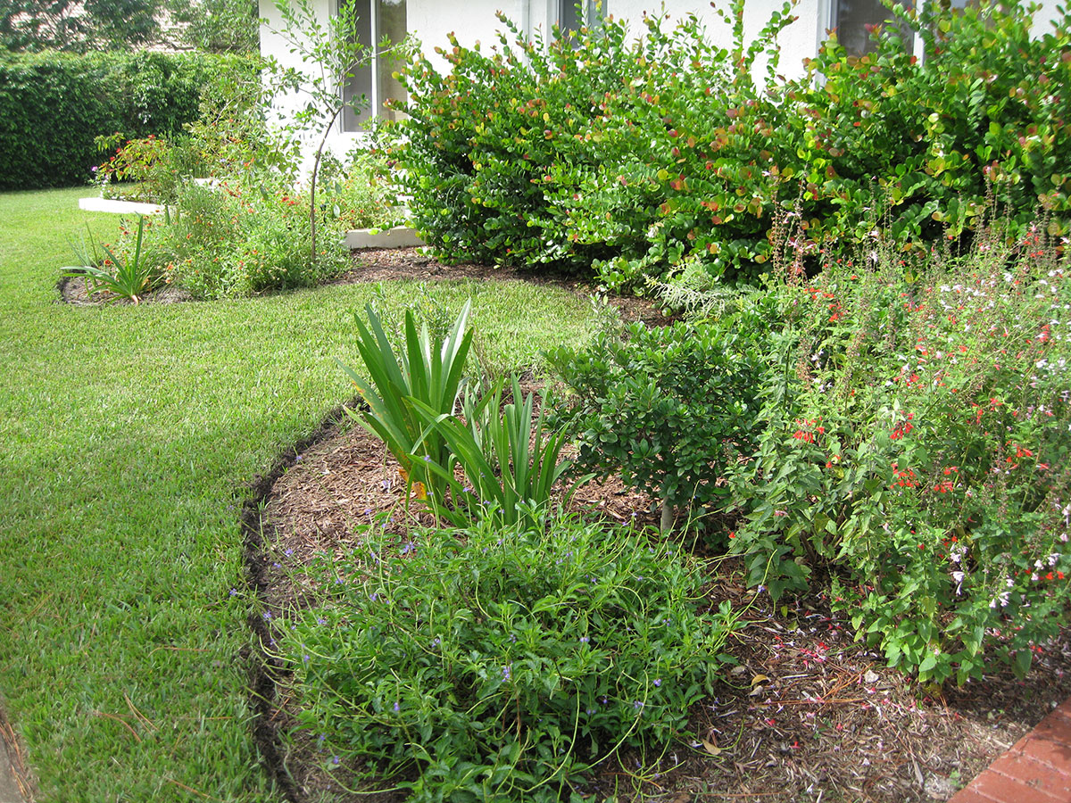 Xeriscape, Landscaping South Florida