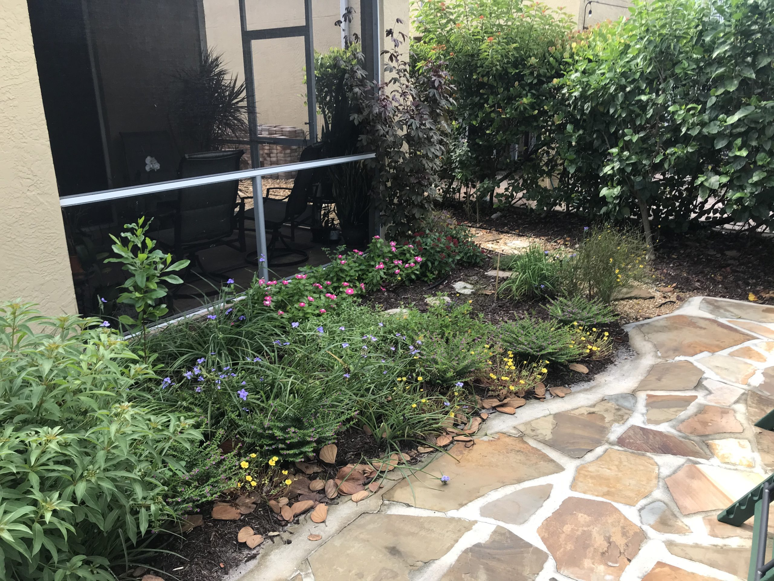 Xeriscape, Landscaping, South Florida